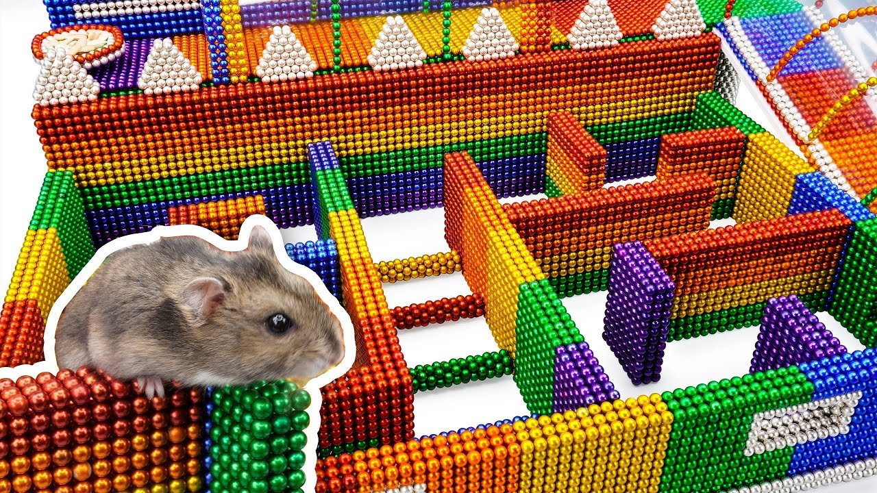 DIY - Build Amazing Maze Labyrinth For Hamster Pet With Magnetic Balls (Satisfying) - Magnet Balls