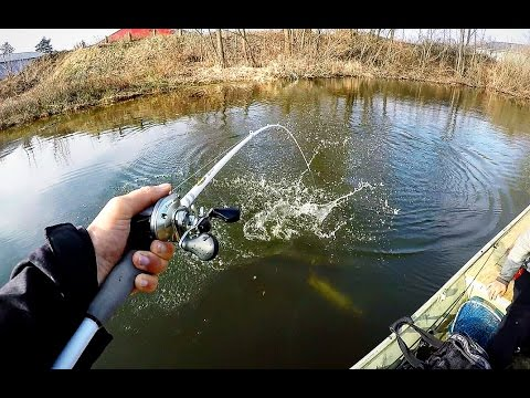 Ice out big bass fishing action youtube for Ice fishing for bass