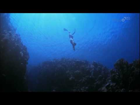 Free Diving - Ocean Men: Extreme Dive from YouTube · Duration:  2 minutes 22 seconds