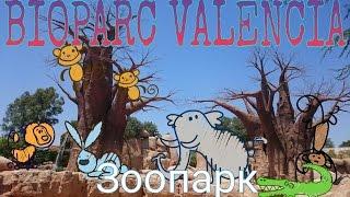 Зоопарк животных и рыбок|BIOPARC VALENCIA Zoo