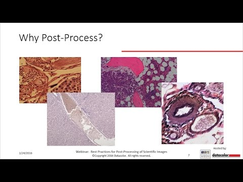 Best Practices for Post Processing of Scientific Images - Photoshop and ImageJ are n
