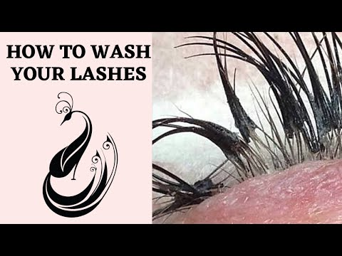 How To Clean Your Eyelash Extensions | Yegi Lash Foam Cleanser Set Tutorial