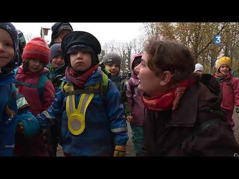 En Suisse, les jardins d'enfants se déclinent en forêt