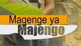 Magenge Ya Majengo
