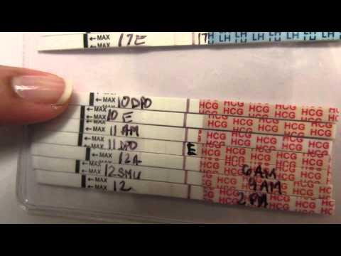 SMEP ttc test progression bfn & bfp- how we conceived