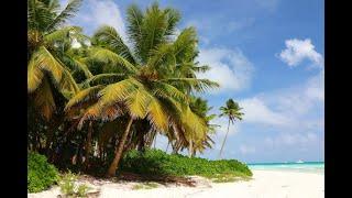 Die  Inseln von Hawaii