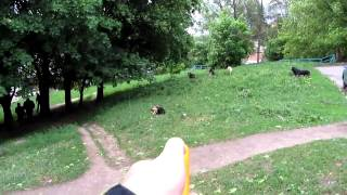 видео отпугиватель от собак