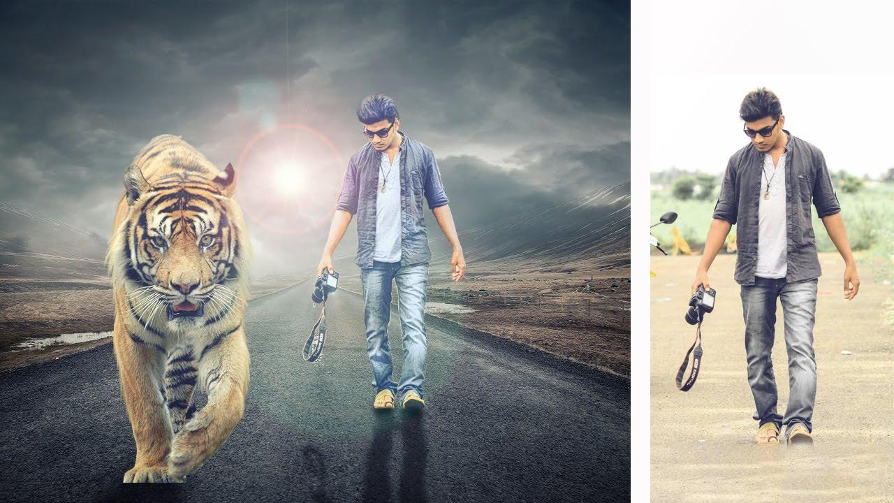 Tiger HD Wallpaper Background Image x ID