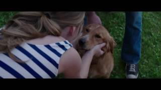 【為了與你相遇】溫馨片段:貝利嗅覺篇-2月24日 你是唯一