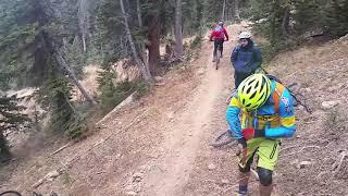 Whole Enchilada bicycle crash Igor