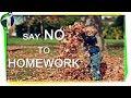 Say No to Homework Urdu Hindi