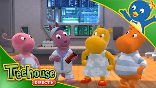 The Backyardigans (HD) - Episode 61-65 - Cartoon for Kids by Treehouse Direct