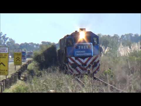 Tren Local Ballester Zárate y Carga por Entre Ríos