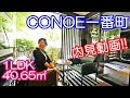 【CONOE一番町】内見動画 1LDK 40.65?