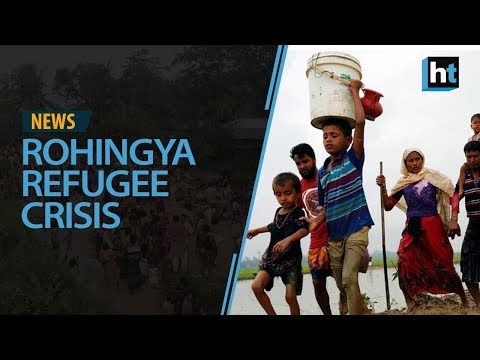 Refugee crisis India plans to deport them Rohingyas recount journey