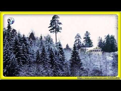 Winter in Oredezh River - Leningrad Oblast | Russia