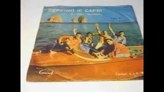 """Peppino Di Capri E I Suoi Rockers Forget Me ? / Nun È Peccato PLAK RECORD 7"""""""