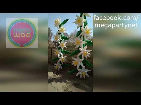 Пневмоцветы от Мега-Шар