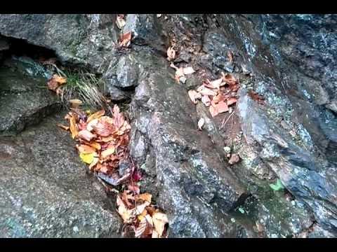 Rattlesnake hill blue hills quincy ma