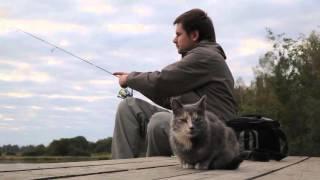 видеоролики для компании Crazy Fish - Кошка