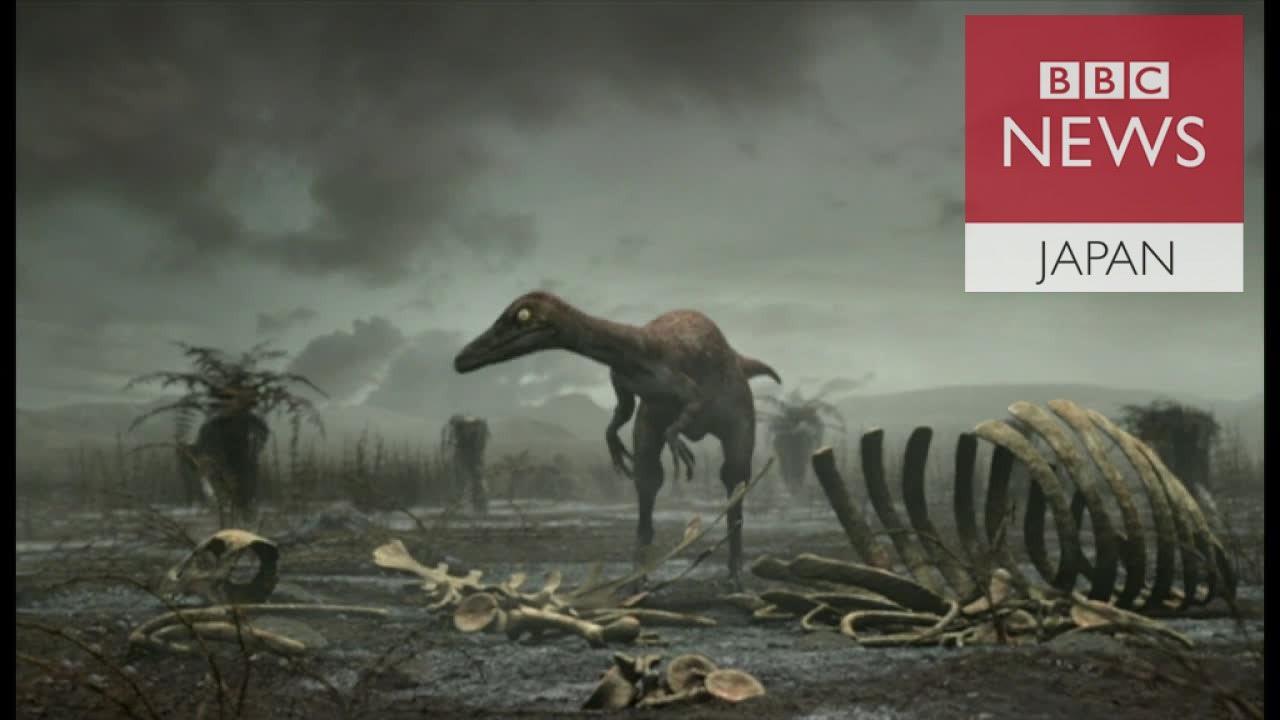 恐竜絶滅は小惑星衝突のせいでは...