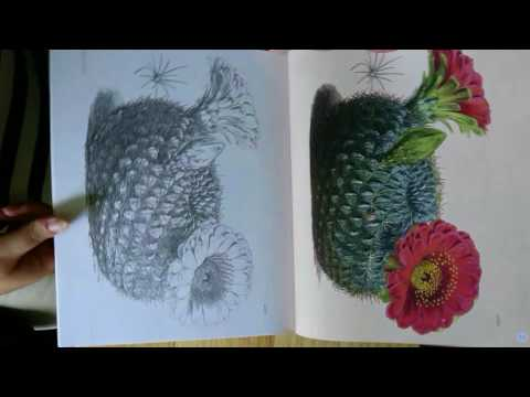 the-kew-gardens-beautiful-flowers-colouring-book
