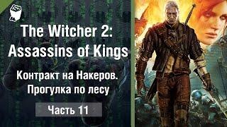 Прохождение The Witcher 2: Assassins of Kings (Ведьмак 2) #11, Контракт на Накеров. Прогулка по лесу