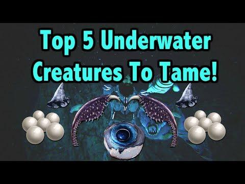 Ark Survival Evolved Top 5 Underwater Creatures!!