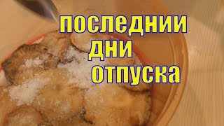 VLOG/ Солю волнушки/ Уходит масло?/ Завтра на кладбище