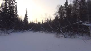 Virgin taiga in the cold - 55 single hiking hunting fishing Siberia frostbite survival