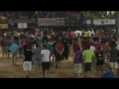 Bous Fiestas Patronales Puerto Sagunto 2013