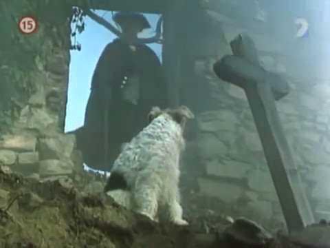 Mozart e il cinema - (Non) dimenticate Mozart (1985) - 2