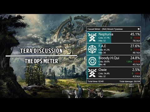 Tera Discussion | The DPS Tracker - Is It Needed?