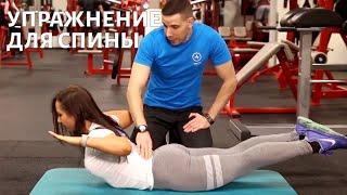 Рецепт здоровья. Фитнес. Поясница Телеканал Доктор
