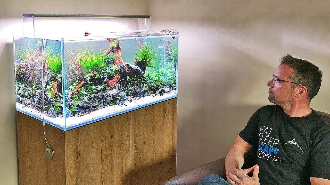 HOW TO set up a planted tank nature aquarium AQUASCAPE ...