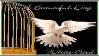 Download It's A Beautiful Day - White Bird (1969) MP3 song and Music Video