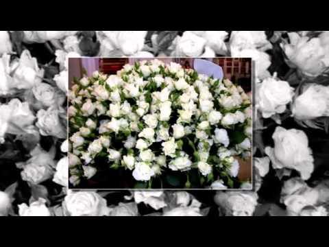 Международная выставка цветов в Москве. Август 2013 г