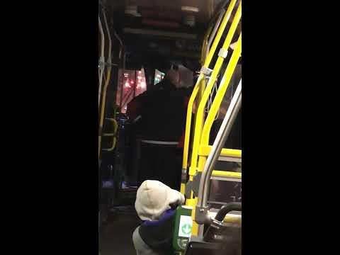 TTC Toronto Transit Bus Fight