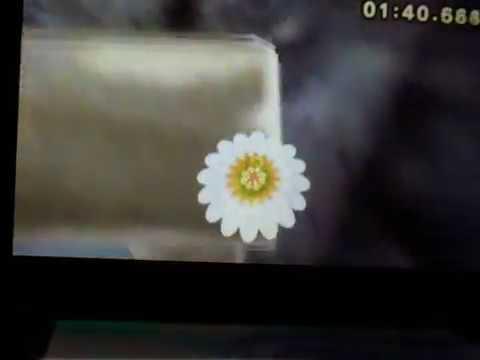 Mario Kart 7 - Raccourcis, Glitchs, Choses inutiles !! V 1.0