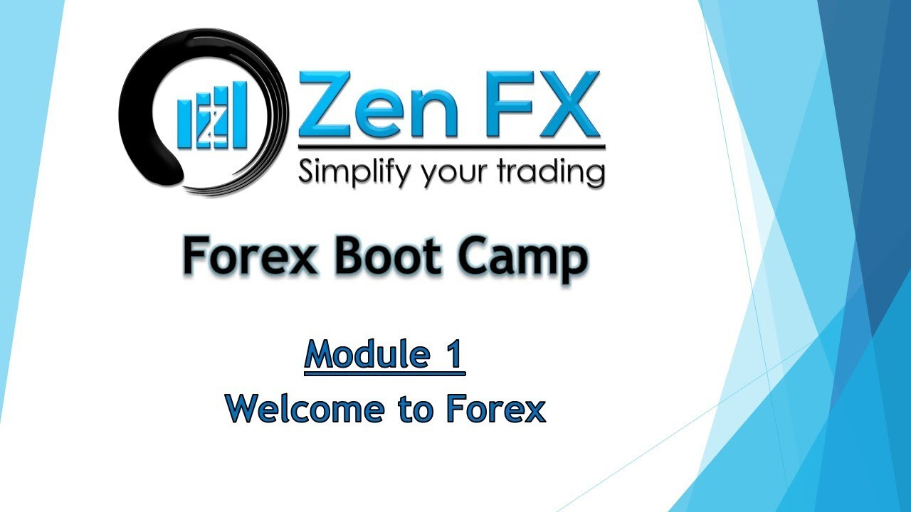 Forex camp