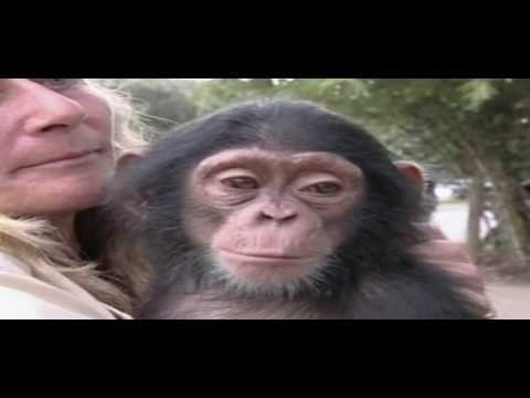 Arabias Wildlife Centre | Animalia Episode 09