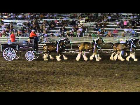 2nd Cowley County Fair Winfield, ks 2015