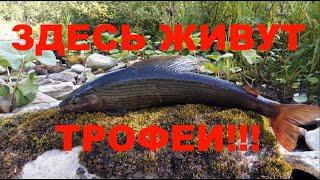 Экспедиция на Северный Урал. Перевал Дятлова. Часть 6. Рыбалка на камеру, баня, единение с природой.