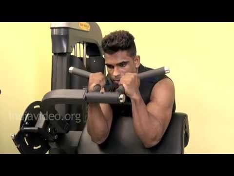Preacher Hammer Curls - Biceps Exercise Guide
