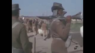 93,000 Pakistani troops surrender   Rare footage of 1971 india pak war   Pak Troops Surrender