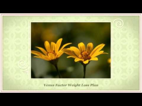 Quick Weight Loss Diet Plan - Venus Factor Price