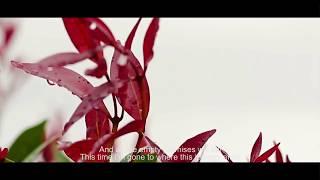 Video Adhitia Sofyan - Forget Jakarta (Unofficial Lyric Video) download MP3, 3GP, MP4, WEBM, AVI, FLV Agustus 2018