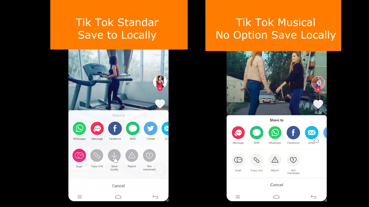 tik tok video downloader online