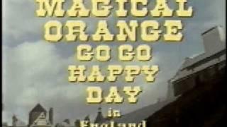 gogo happy day-magical orange.