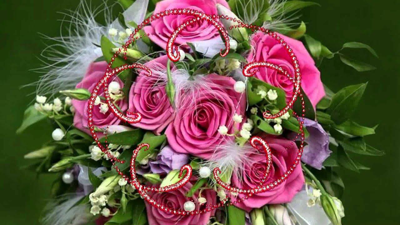 фото цветы розы скачать